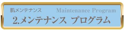 メンテナンスプログラム